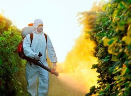 Kako da uklonimo pesticide iz povrća i voća