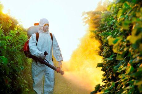Kako ukloniti pesticide iz voća i povrća